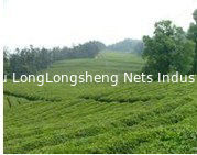 China Green Blue Black Landscape Netting Slope Safety Nets To Plant Support supplier