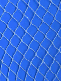 Blue Anti Bird Plant Protection Netting Hdpe Frost Netting Covers With UV